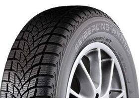Rehv 185/60R14 82T Seiberling Winter M+S
